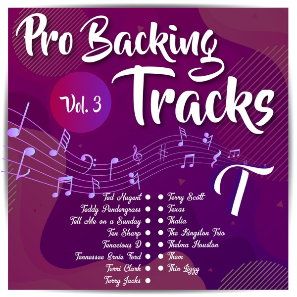 Pro Backing Tracks T, Vol.3