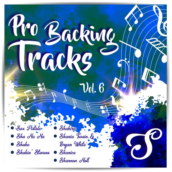 Pro Backing Tracks S, Vol.6