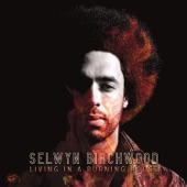 Selwyn Birchwood - I Got Drunk, Laid And Stoned