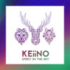 Keiino - Spirit in the Sky artwork
