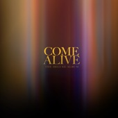 Come Alive (feat. Todd Dulaney) artwork
