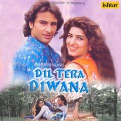 Dil Tera Diwana (Original Motion Picture Soundtrack)