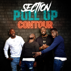 Section Pull Up - Contour