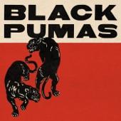 Black Pumas - Strangers (feat. Lucius)
