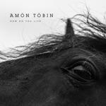 Amon Tobin - Rise to Ashes