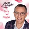 Marco de Hollander - Zo Is Het Leven kunstwerk