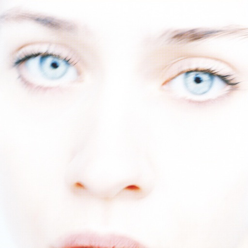 Art for Criminal by Fiona Apple