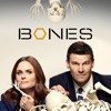 Bones, Season 10 - Synopsis and Reviews