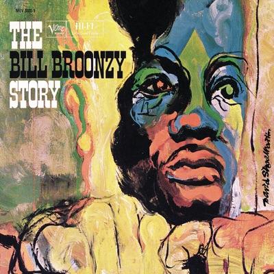 The Big Bill Broonzy Story - Big Bill Broonzy