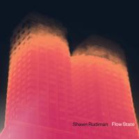Shawn Rudiman - Flow State artwork