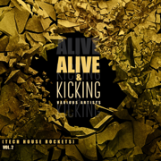 Alive & Kicking (Tech House Rockets), Vol. 2 - Various Artists - Various Artists