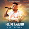 Por Inteiro (Ao Vivo) - Felipe Araújo