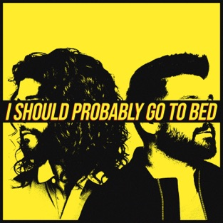 Dan + Shay – I Should Probably Go To Bed – Single [iTunes Plus AAC M4A]