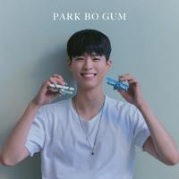Park Bo Gum - blue bird artwork