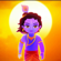 Krishna Flute - Vidhin Boda