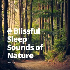 # Blissful Sleep Sounds of Nature