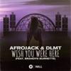 Wish You Were Here (feat. Brandyn Burnette) by Afrojack & DLMT