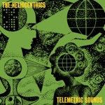 The Heliocentrics - Devastation