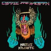 Hiatus Kaiyote - Fingerprints