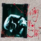 Ani Difranco - Both Hands (live)