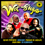 Wet Sugar Riddim - EP - Various Artists - Various Artists
