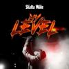 Shatta Wale - My Level artwork