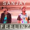 Feelinz feat Farenizzi Single