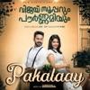 Pakalaay From Vijay Superum Pournamiyum Single
