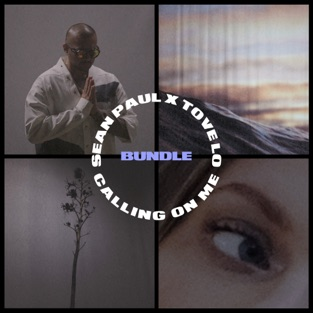 Sean Paul & Tove Lo – Calling On Me – EP [iTunes Plus AAC M4A]
