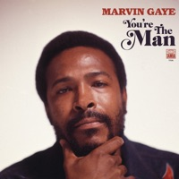Disco You're the Man - Marvin Gaye