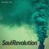 soul-revolution