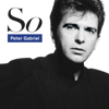 Peter Gabriel - Don't Give Up artwork