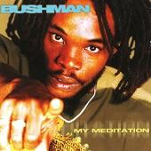 Bushman - What You Gonna Do