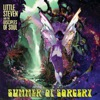 Summer of Sorcery (feat. The Disciples of Soul)