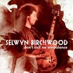 Selwyn Birchwood - Hoodoo Stew