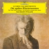 Beethoven: The Late Piano Sonatas (Nos. 28-32) ジャケット写真