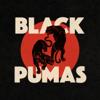 Black Pumas - Colors Grafik