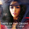 Bollywood Buddha Indian Music Café - Seductive Songs artwork