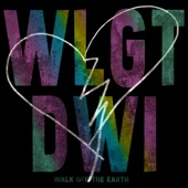 Walk Off The Earth - What's Love Got to Do with It