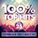 100% Top Hits Vol. 25
