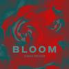 Sarah Kroger - Bloom