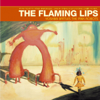The Flaming Lips - Do You Realize??  artwork
