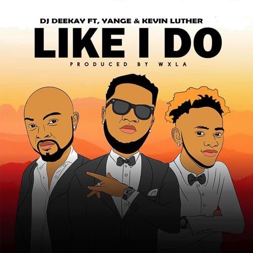 Like I Do (feat. Dj Deekay & Kevin Luther) Image