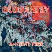 Buddahfly - Love and Affection