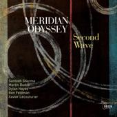 Meridian Odyssey - Looking Ahead