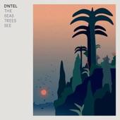 Dntel - The Man On The Mountain
