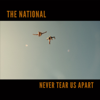 The National - Never Tear Us Apart artwork