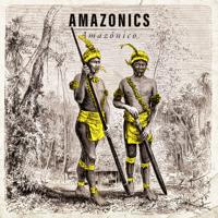 Amazonics - Amazónico artwork