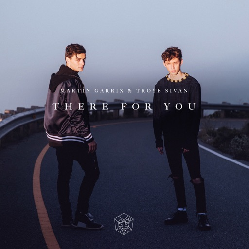 Art for There For You by Martin Garrix & Troye Sivan