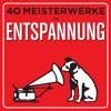Verschiedene Interpreten - 40 Meisterwerke - Entspannung Grafik